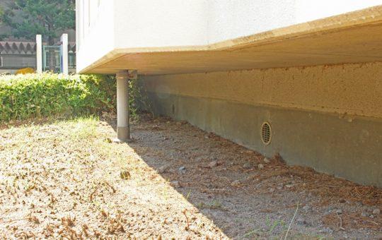 軒下にコウモリに糞をされないために試しておきたい対策法3選