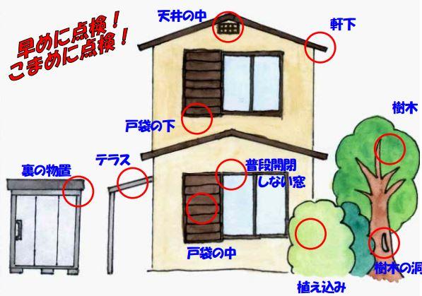 画像引用元:川崎市公式ウェブサイト「巣を作りやすい場所」より