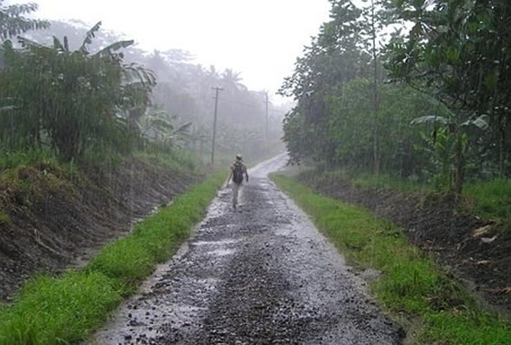 長雨の時期に、表に出てくる