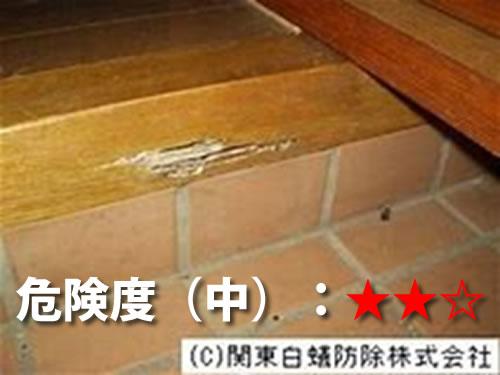 玄関のシロアリ被害2