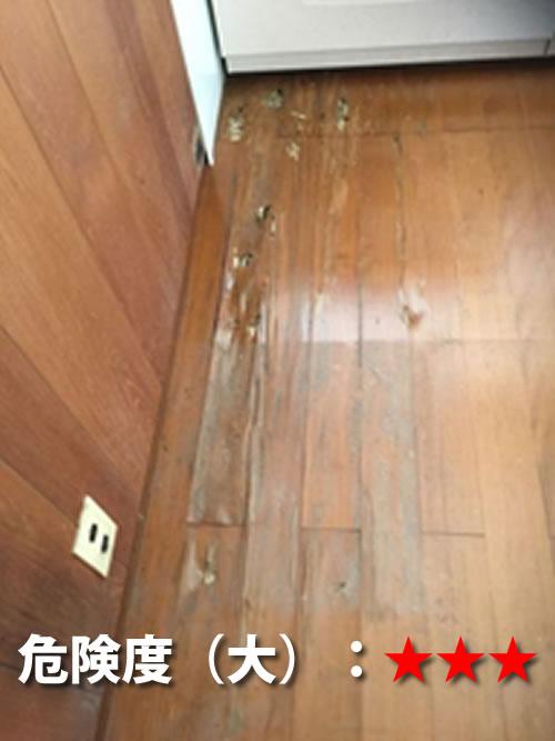 キッチン前のシロアリ被害1
