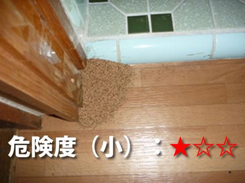 トイレ・洗面所のシロアリ被害3