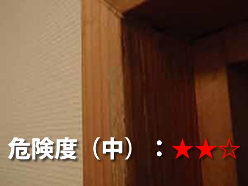 トイレ・洗面所のシロアリ被害2