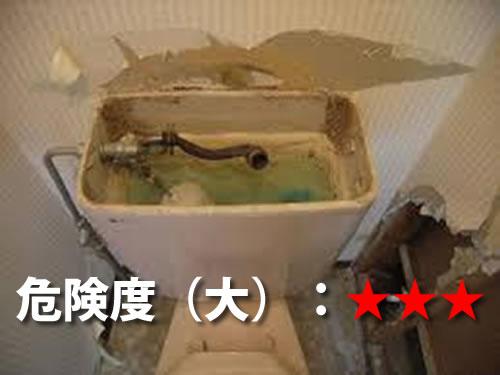 トイレ・洗面所のシロアリ被害1