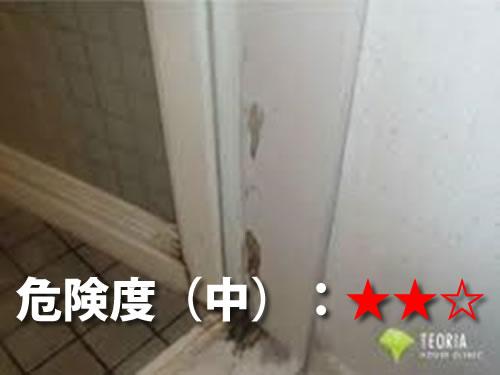 浴室のシロアリ被害2