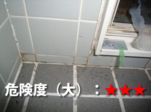 浴室のシロアリ被害3
