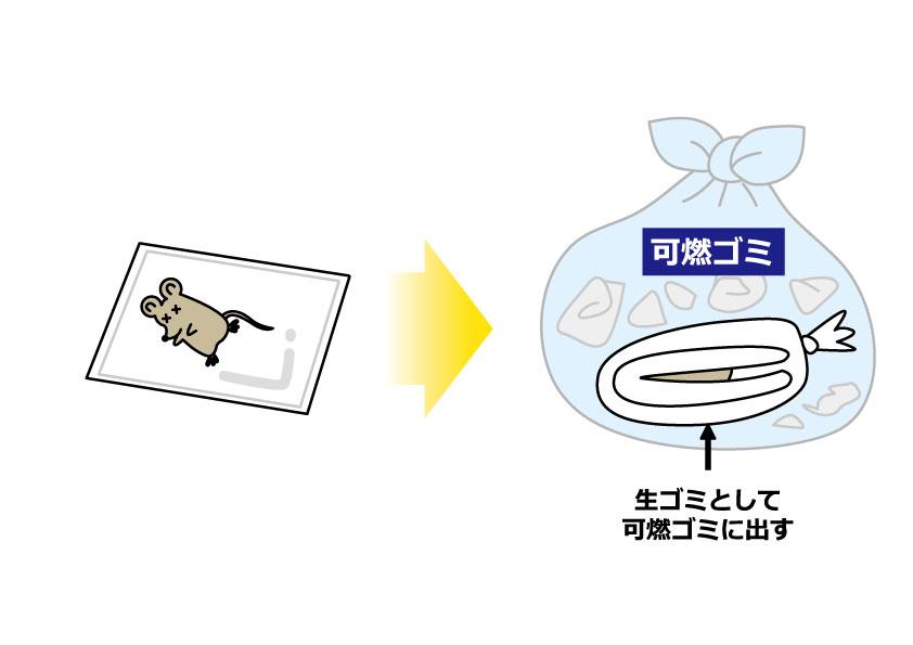 ネズミ駆除手順6