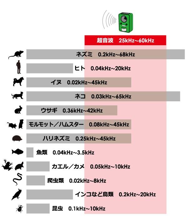 人間と動物の可聴域